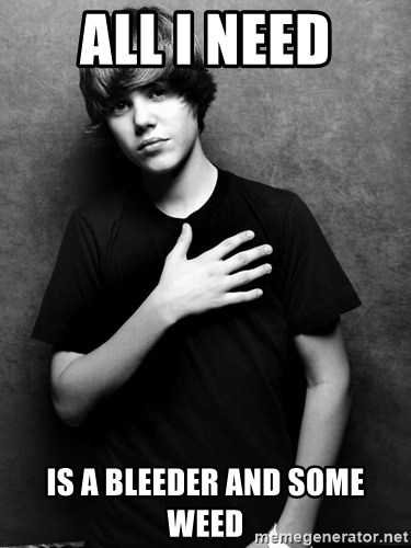 Justin - All I need Is a bleeder and some weed