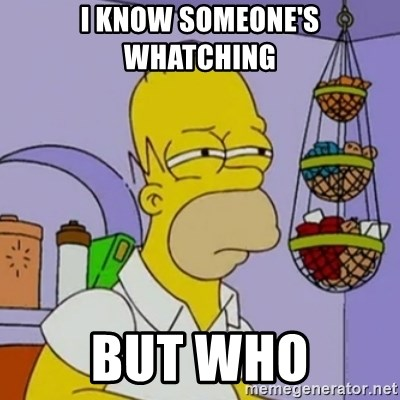 Simpsons' Homer - I KNOW SOMEONE'S WHATCHING  BUT WHO