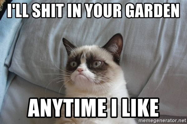 Grumpy cat good - I'll SHIT IN YOUR GARDEN ANYTIME I LIKE