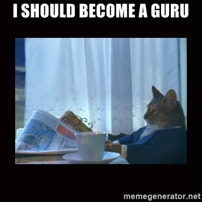 i should buy a boat cat - I should become a Guru