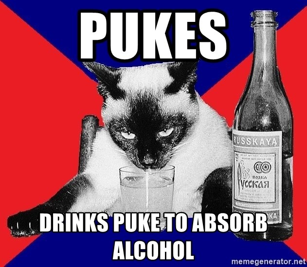 Alco-cat - Pukes Drinks puke to absorb alcohol