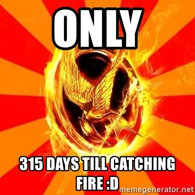 Typical fan of the hunger games - ONLY  315 DAYS TILL CATCHING FIRE :D