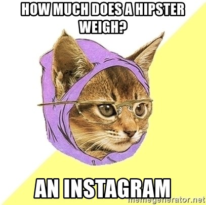 Hipster Kitty - How much does a hipster weigh? an instagram
