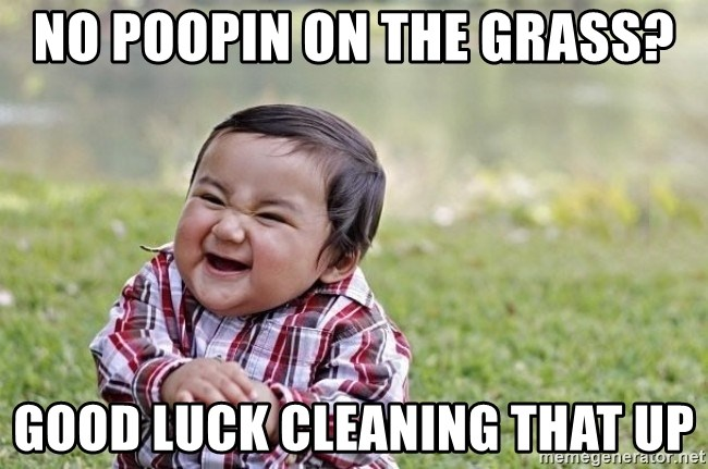 evil asian plotting baby - no poopin on the grass? good luck cleaning that up