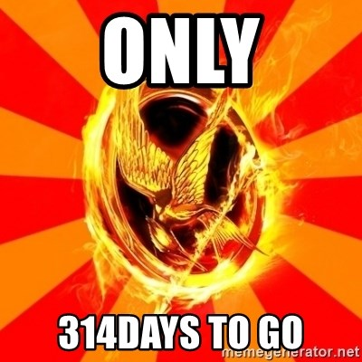 Typical fan of the hunger games - ONLY 314DAYS TO GO