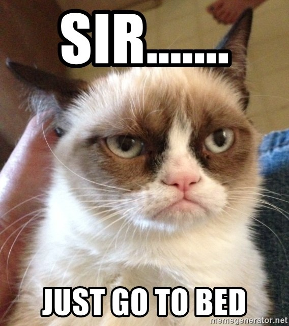 Mr angry cat - Sir....... Just go to bed