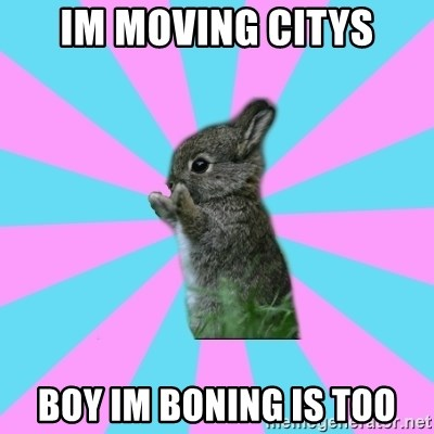 yAy FoR LifE BunNy - im moving citys boy im boning is too