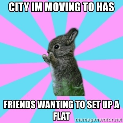 yAy FoR LifE BunNy - city im moving to has friends wanting to set up a flat