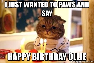 Birthday Cat - i JUST WANTED TO PAWS AND SAY HAPPY BIRTHDAY OLLIE