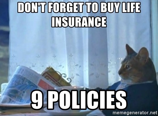 newspaper cat realization - don't forget to buy life insurance 9 policies