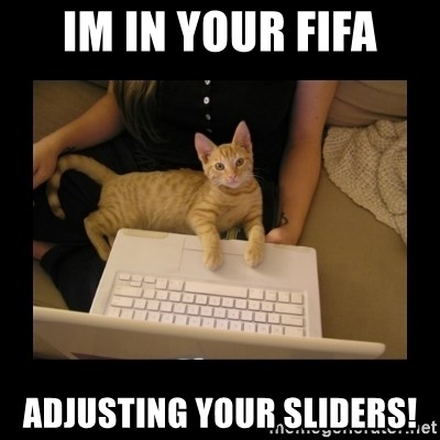 Freelance Writer Kitten - im in your fifa adjusting your sliders!