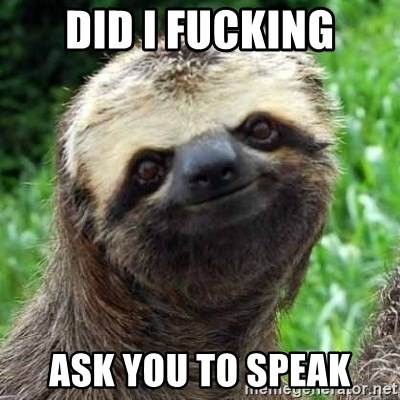 Sarcastic Sloth - Did i fucking ask you to speak