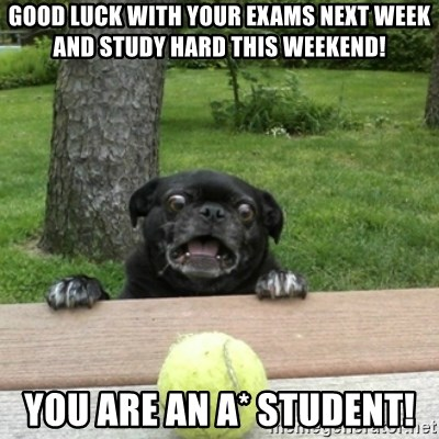 Ermahgerd Pug - good luck with your exams next week and study hard this weekend! you are an a* student!