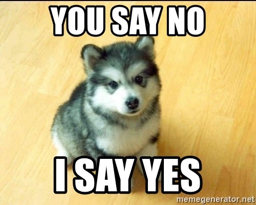 Baby Courage Wolf - You say no I say yes