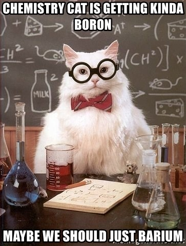 Chemistry Cat - Chemistry cat is getting kinda boron maybe we should just barium