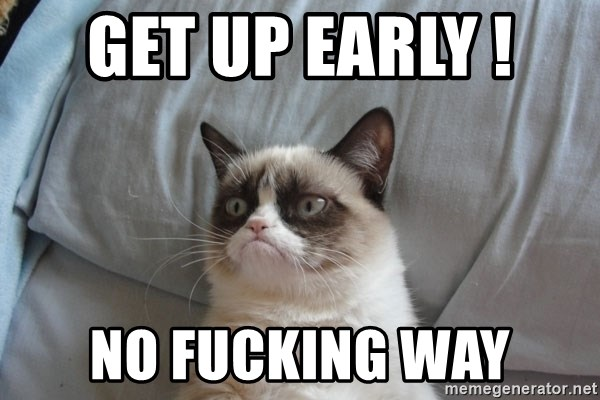 moody cat - Get up eaRly !  No fucking way