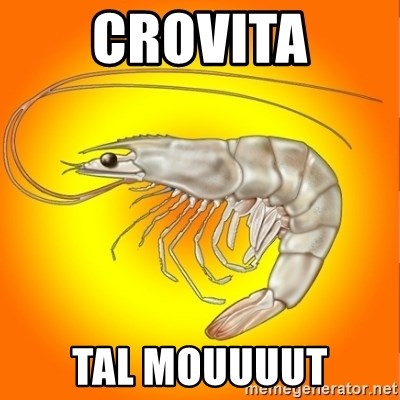 Socially awkward shrimp - Crovita tal mouuuut