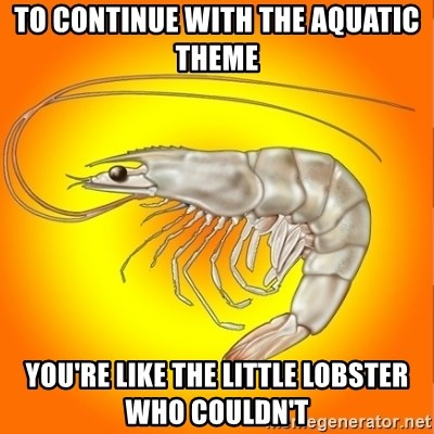 Socially awkward shrimp - to continue with the aquatic theme you're like the little lobster who couldn't