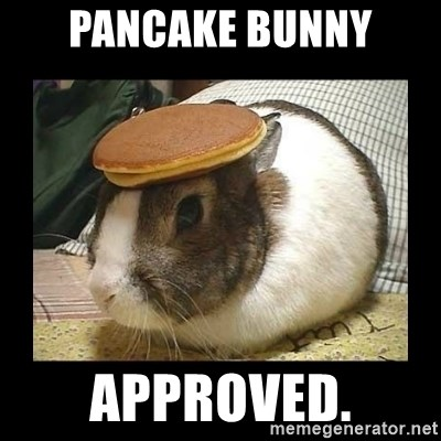 Bunny with Pancake on Head - PANCAKE BUNNY APPROVED.