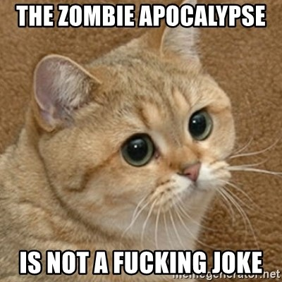 motherfucking game cat - The Zombie Apocalypse  Is Not a FUCKING JOKE