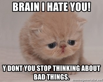 Super Sad Cat - BRAIN I HATE YOU! y DONT YOU STOP THINKING ABOUT BAD THINGS.