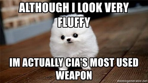 more meat for my duck - ALTHOUGH I LOOK VERY FLUFFY IM ACTUALLY CIA'S MOST USED WEAPON