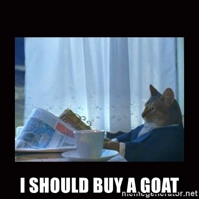 i should buy a boat cat -  i should buy a goat