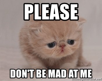please dont be mad at me please don't be mad at me super sad cat meme generator