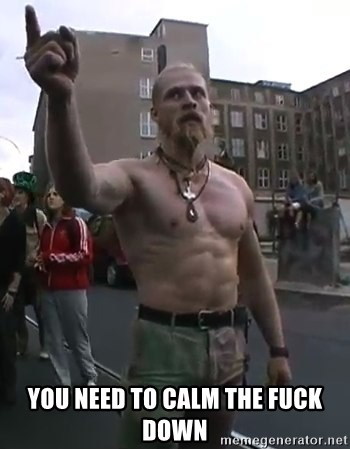 Techno Viking -  You need to calm the fuck down