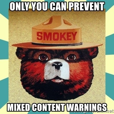 Smokey the Bear - ONLY YOU CAN PREVENT MIXED CONTENT WARNINGS