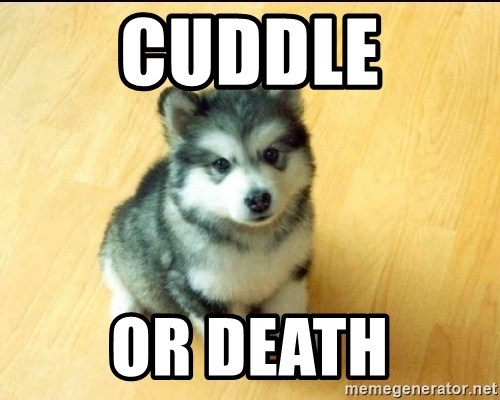 Baby Courage Wolf - Cuddle or death