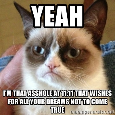 Grumpy Cat  - Yeah I'm that asshole at 11:11 that wishes for all your dreams not to come true