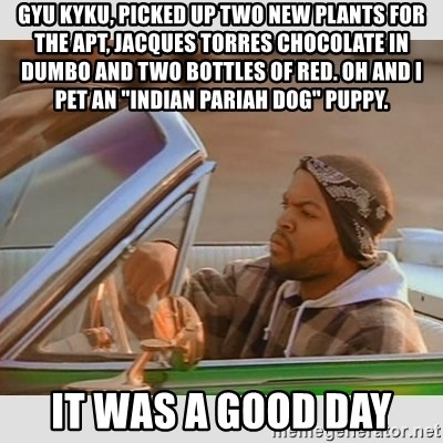 """Ice Cube Good Day - Gyu Kyku, picked up two new plants for the apt, Jacques Torres chocolate in Dumbo and two bottles of red. Oh and I pet an """"Indian Pariah dog"""" puppy. It was a good day"""