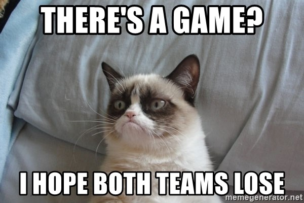 Grumpy cat good - There's a game? I hope both teams lose