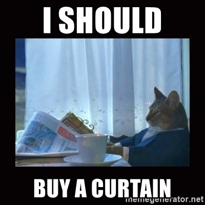 i should buy a boat cat - I should  buy a Curtain