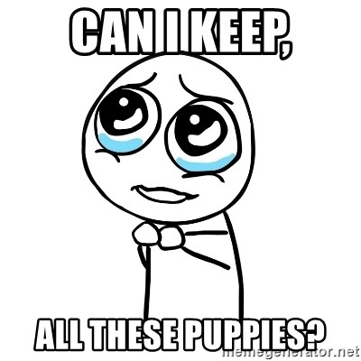 pleaseguy  - can i keep, all these puppies?