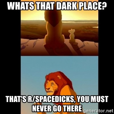 Lion King Shadowy Place - WHats that dark place? That's r/spacedicks, you must never go there