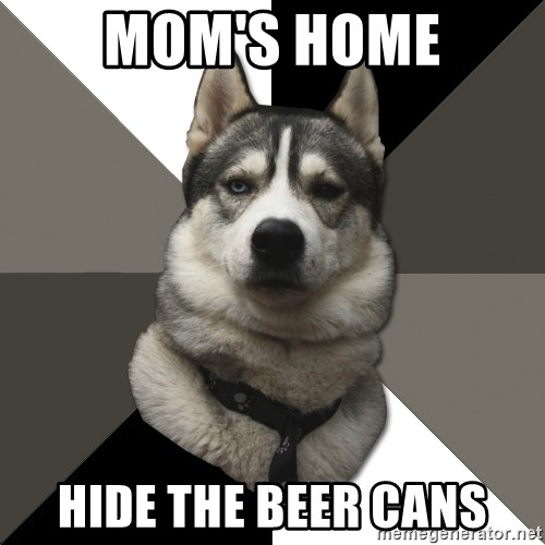 Wise Husky - Mom's home hide the beer cans