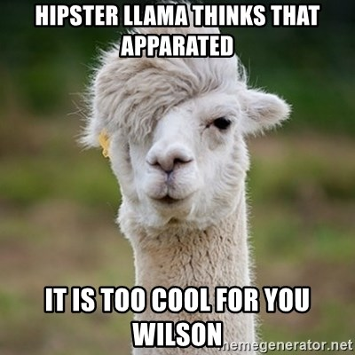 Hipster Llama - hipster llama thinks that apparated it is too cool for you wilson