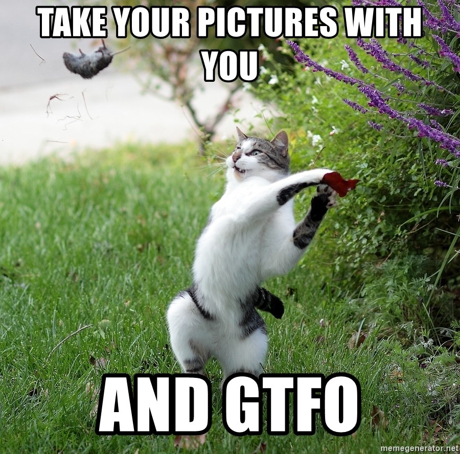 GTFO - take your pictures with you and gtfo