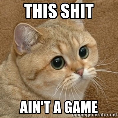 motherfucking game cat - this shit ain't a game