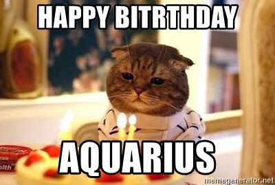Birthday Cat - Happy Bitrthday Aquarius