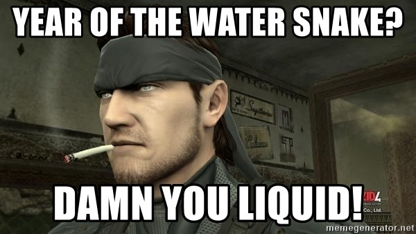 Solid Snake - Year oF the water snake?  DaMN you liquid!