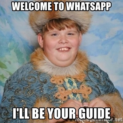 34611090 welcome to whatsapp i'll be your guide welcome to the internet i,Whatsapp Meme