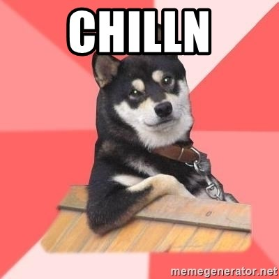 Cool Dog - CHILLN