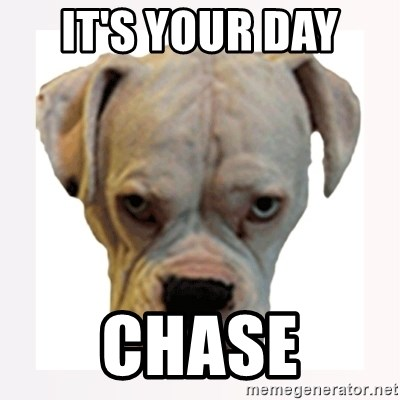stahp guise - it's your day  chase