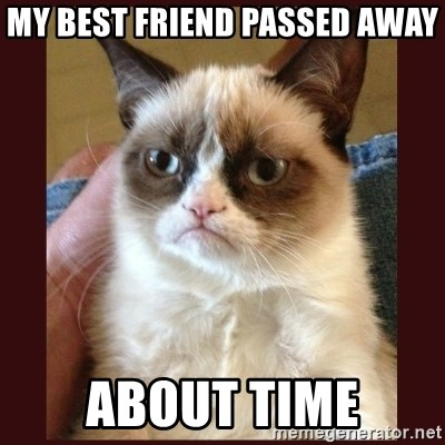 Tard the Grumpy Cat - My best friend passed away about time