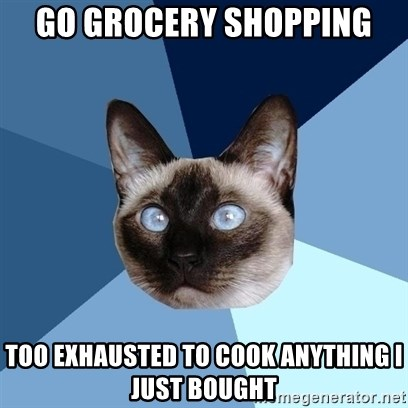 Chronic Illness Cat - go grocery shopping too Exhausted to cook anything I just bought