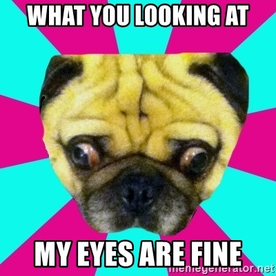 Perplexed Pug - WHAT YOU LOOKING AT MY EYES ARE FINE