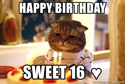 Birthday Cat - Happy Birthday SWEET 16  ♥